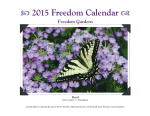 2015 Calendar Pic
